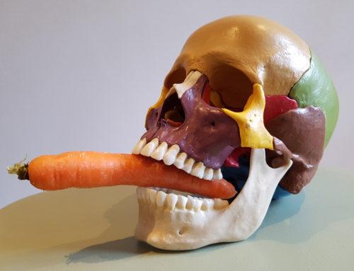 """""""Biodynamisk kranie-makral eller hva´ siger du? Får vi så oss´ gulerødder til?"""""""